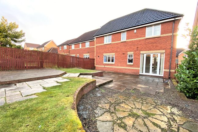 Rear Garden of 20 Lawers Road, Broughty Ferry, Dundee DD5