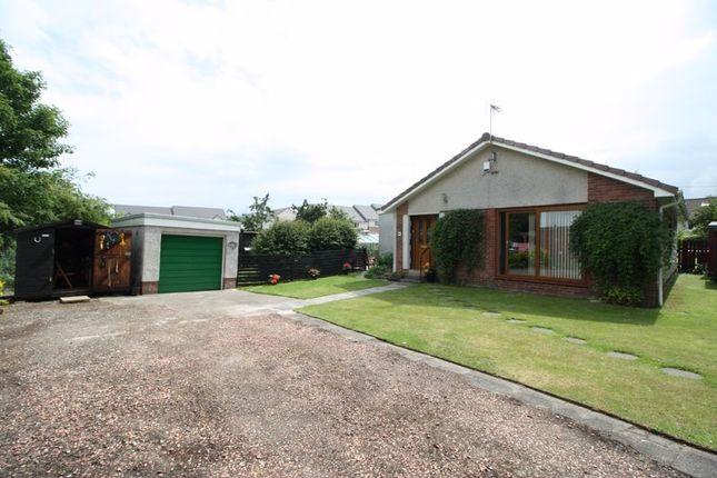 Thumbnail Detached bungalow for sale in Burnside Crescent, Clackmannan