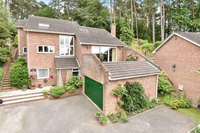 Thumbnail Detached house for sale in Cock-A-Dobby, Sandhurst, Berkshire