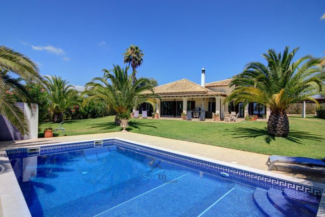 Sunbathing Poolside
