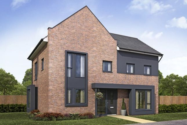 "Thumbnail Detached house for sale in ""Lewisham"" at Dunnock Lane, Cottam, Preston"