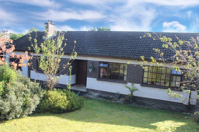 Thumbnail Detached bungalow for sale in Avoca Lawn, Warrenpoint, Newry