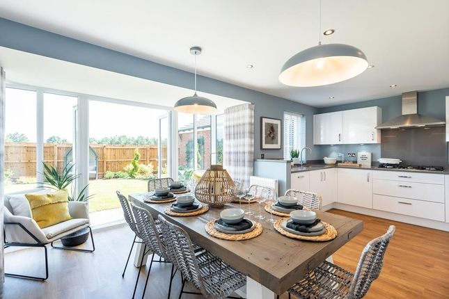 """Thumbnail Detached house for sale in """"Holden Special"""" at Warkton Lane, Barton Seagrave, Kettering"""