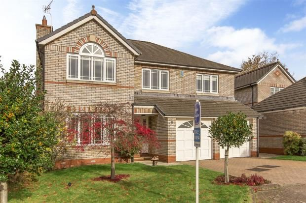 Thumbnail Detached house for sale in Batterflatts Gardens, Stirling