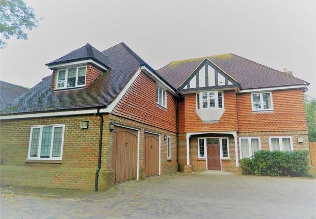 Thumbnail Detached house to rent in The Drive, Hellingly, Hailsham, East Sussex