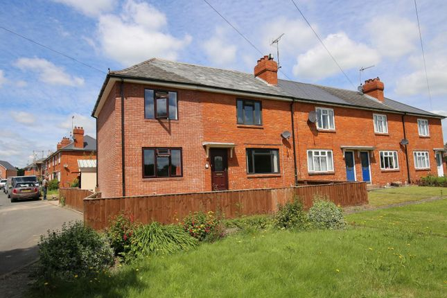Thumbnail Semi-detached house to rent in Fir Close, Willand, Cullompton