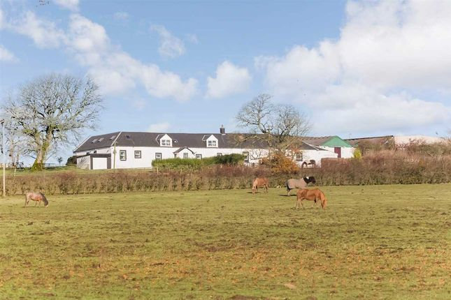 Thumbnail Equestrian property for sale in Waterside, Kilmarnock