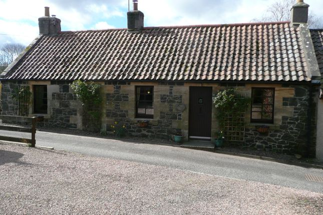 Thumbnail Semi-detached house for sale in The Wynd, Kilmany