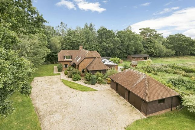 Thumbnail Detached house for sale in New Road, Landford, Salisbury