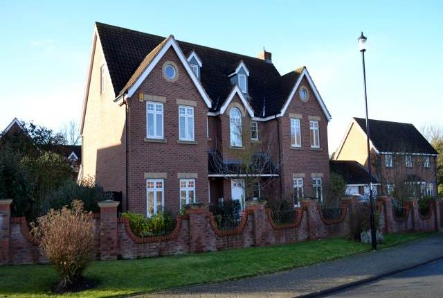 Thumbnail Detached house to rent in Eider Drive, Leegomery, Telford
