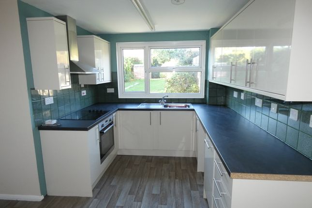 Thumbnail Property to rent in Donaldson Road, Salisbury