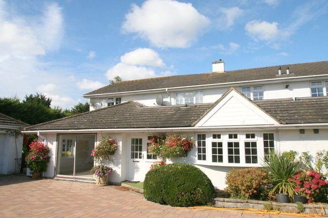 Thumbnail Semi-detached house to rent in Toddington Lane, Wick, Littlehampton