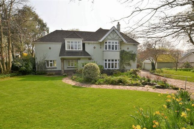 Thumbnail Property for sale in Greenway Road, Galmpton, Brixham.