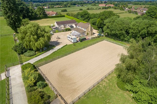 Thumbnail Equestrian property for sale in Northfield Lane, Over Stratton, South Petherton, Somerset