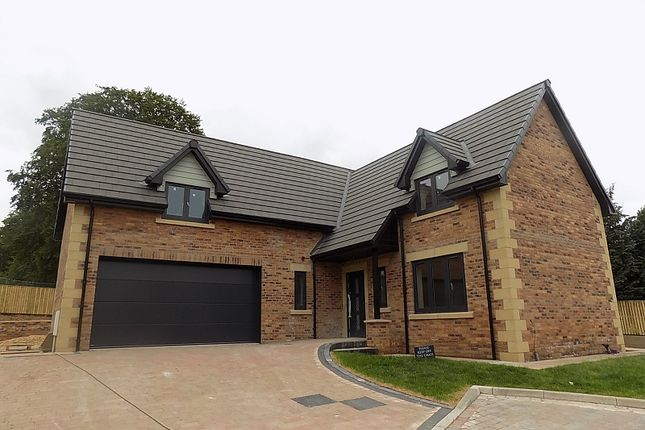 Thumbnail Detached house for sale in The Eamont, Plot 4, William's Pasture, Aglionby