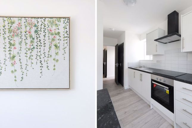 Thumbnail Property to rent in Arundel Road, Brighton