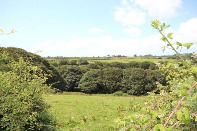 Picture No. 3 of Wendron, Helston, Cornwall TR13