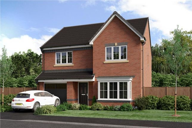 """Thumbnail Detached house for sale in """"Chadwick"""" at Joe Lane, Catterall, Preston"""