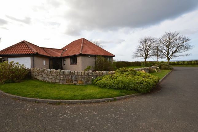 Thumbnail Detached house for sale in Bamburgh, Radcliffe Road, Friars Court