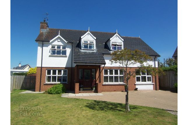 Thumbnail Detached house for sale in Beechcroft, Ballymoney