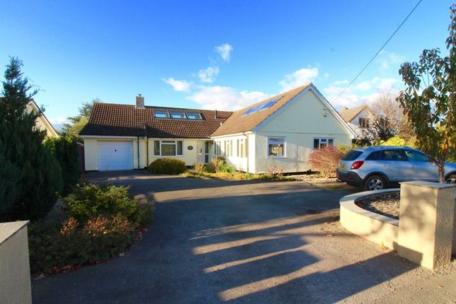 Thumbnail Detached house for sale in White Street, Taunton, Somerset