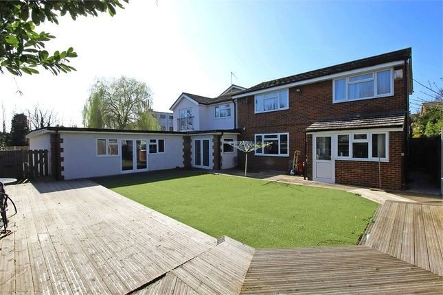 Thumbnail Detached house for sale in Barnstaple Road, Southend-On-Sea, Essex