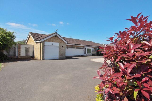 Thumbnail Detached bungalow for sale in Tuttles Lane East, Wymondham