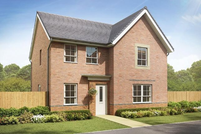 """Thumbnail Detached house for sale in """"Radleigh"""" at Crewe Road, Shavington, Crewe"""