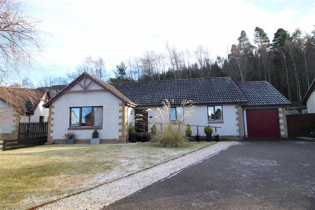 Thumbnail Detached bungalow for sale in 47, Oakdene Court, Inverness