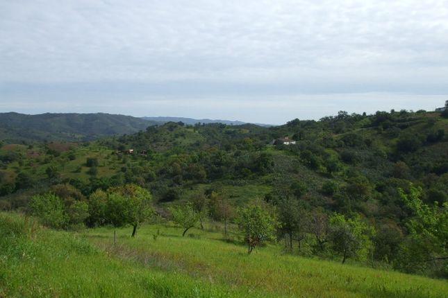 Land for sale in Portugal, Algarve, Tavira