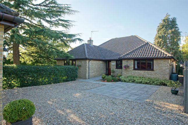 Thumbnail Detached bungalow for sale in Rattlesden Road, Drinkstone, Bury St. Edmunds
