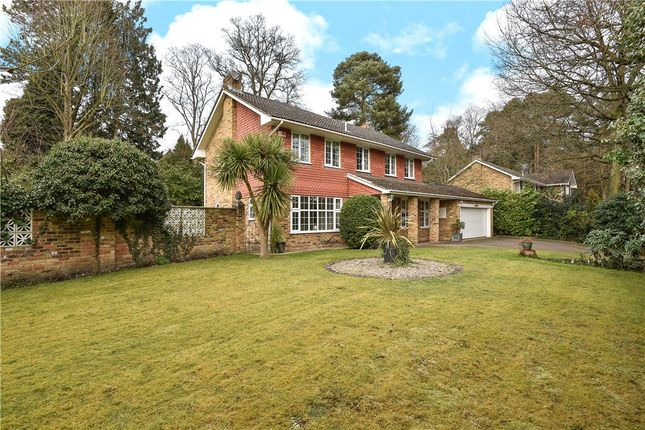 Thumbnail Detached house for sale in Rudd Hall Rise, Camberley, Surrey