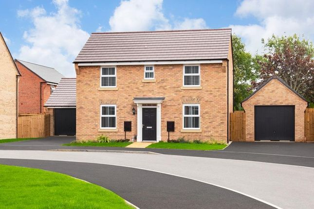 "Thumbnail Detached house for sale in ""Hadley"" at Main Road, Earls Barton, Northampton"