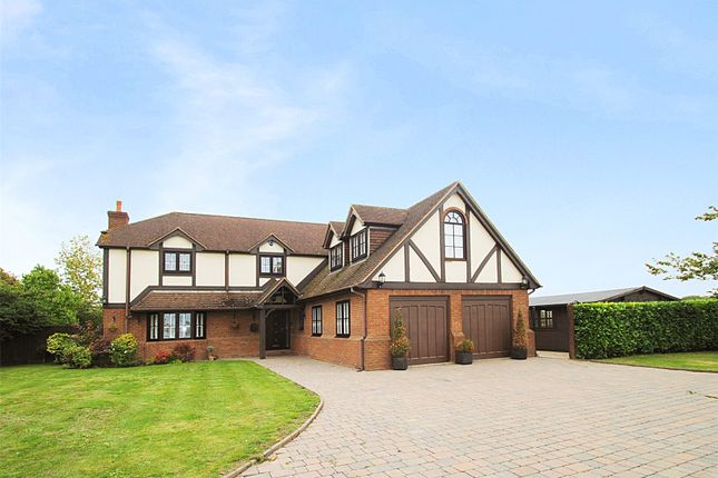 Thumbnail Detached house for sale in Evergreens, North Road, South Ockendon, Essex