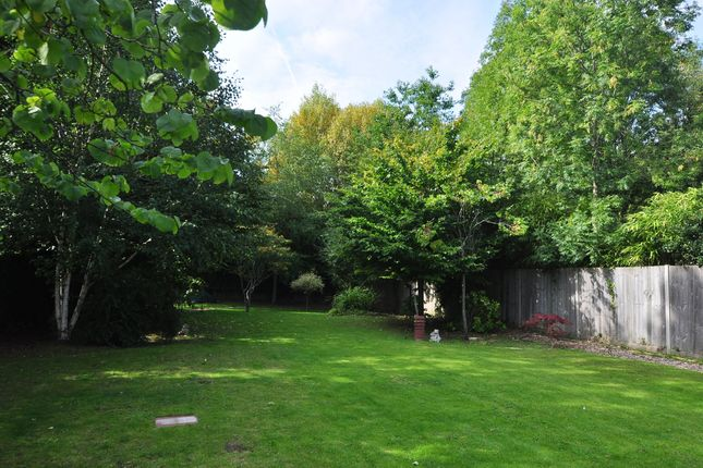 Garden-29 of Nether Street, North Finchley N12