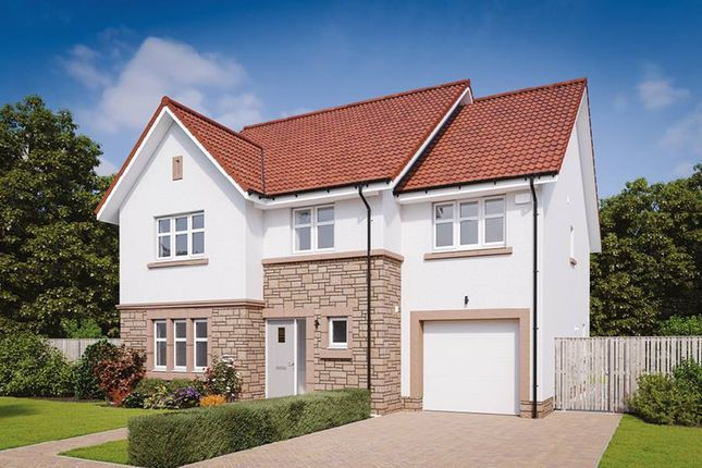 """Thumbnail Detached house for sale in """"The Darroch"""" at Drysdale Avenue, Falkirk"""