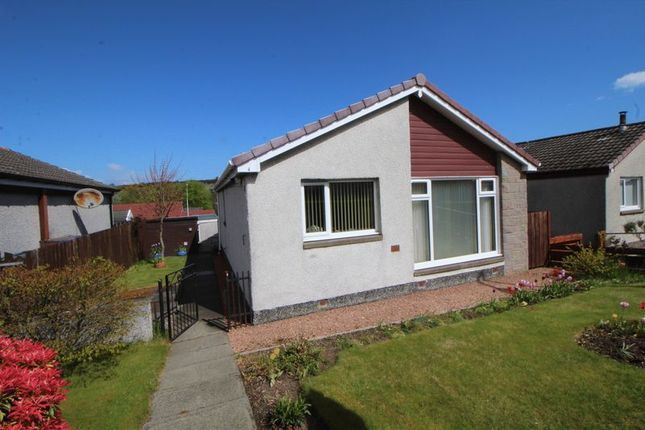 Thumbnail Bungalow for sale in Halyard Terrace, Auchtertool, Kirkcaldy