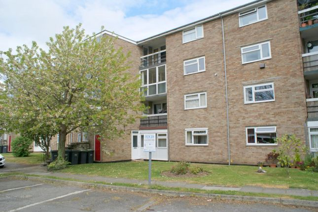 Thumbnail Flat to rent in Compton Court, Chidham Close, Havant