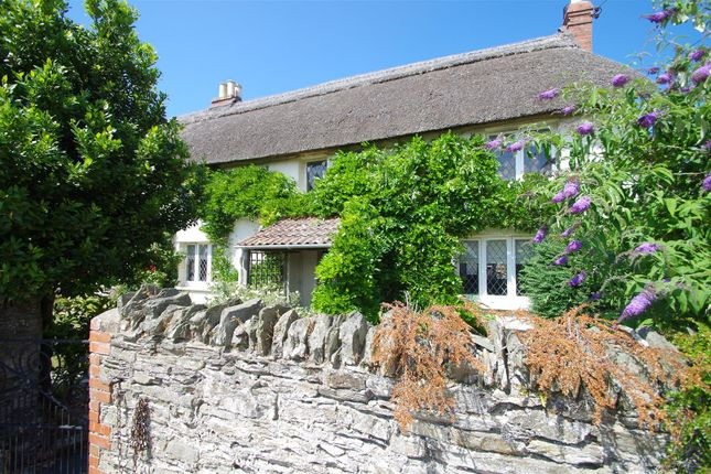 Thumbnail Cottage for sale in Saunton Road, Braunton
