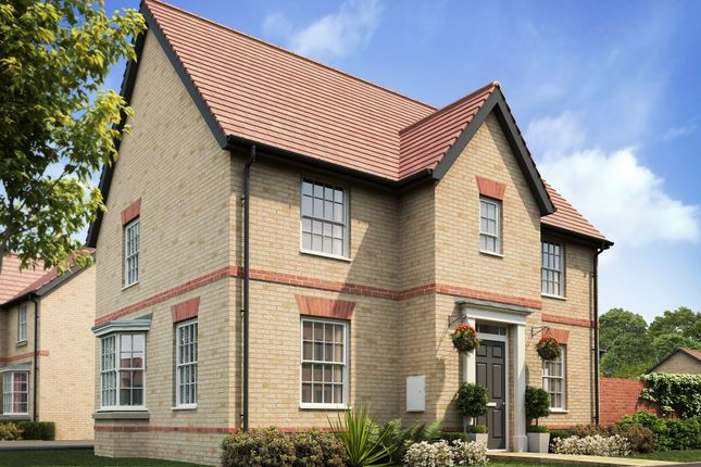 "Thumbnail Detached house for sale in ""Hollinwood"" at Caistor Lane, Poringland, Norwich"