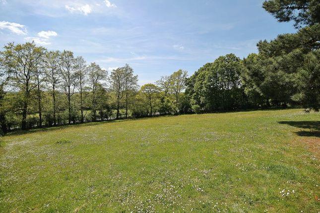 Photo 11 of Spear Hill, Ashington, Pulborough RH20