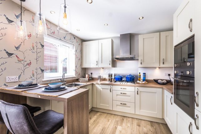 "4 bedroom detached house for sale in ""Denewood"" at Carron Den Road, Stonehaven"