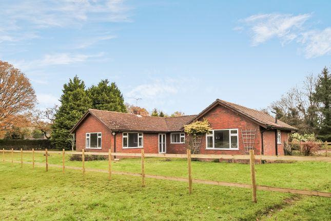 Thumbnail Detached bungalow to rent in Redwood Lane, Medstead, Alton