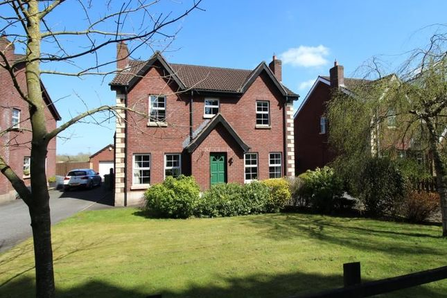 Thumbnail Detached house for sale in Kesh Road, Lisburn