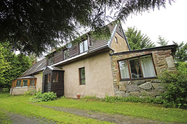 Thumbnail Cottage for sale in Ravenscross & 77B Clashnagrave, Badninish, Dornoch