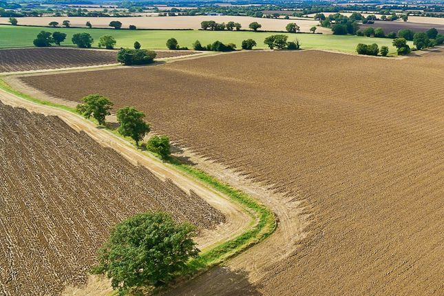 Thumbnail Land for sale in Morris Green, Sible Hedingham, Halstead