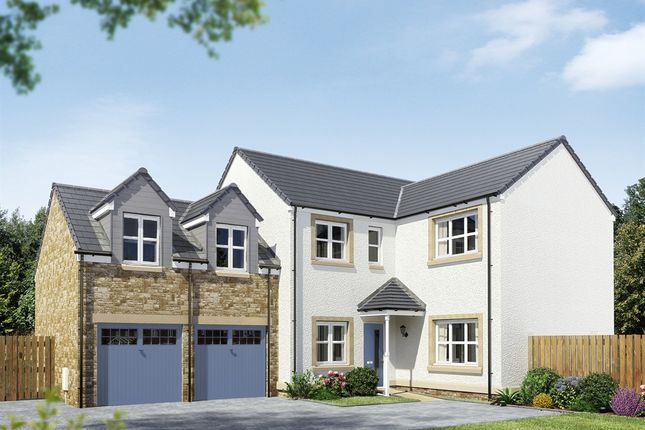 "Thumbnail Detached house for sale in ""The Holyrood "" at East Calder, Livingston"