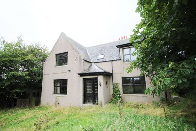 Thumbnail Bungalow for sale in Upperton Farmhouse Cairnbanno, New Deer Turriff AB536Yd