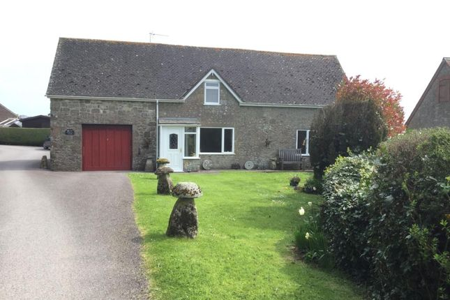 Thumbnail Detached bungalow to rent in Mampitts Lane, Shaftesbury, Dorset