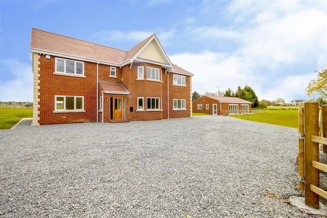 Thumbnail Detached house for sale in Nine Ashes Road, Nine Ashes, Ingatestone